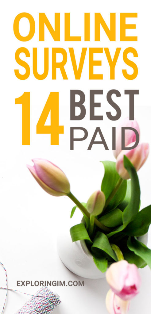 14 Best Paid Online Surveys That Pay You PIN2