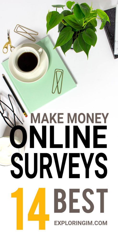 14 Best Paid Online Surveys That Pay You PIN 3